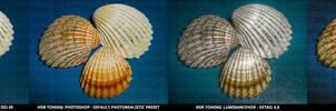 Example No.1 - Shells