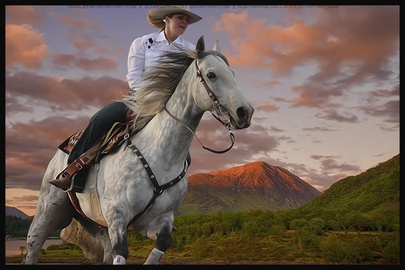 HP Quarter Horse #3 by xsoulstar