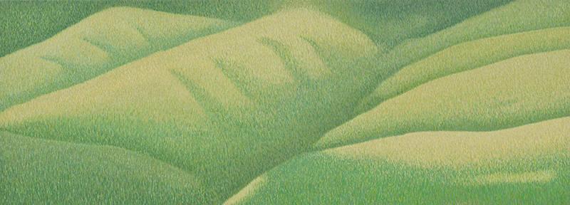 Grassland-49 17x47 2014-web