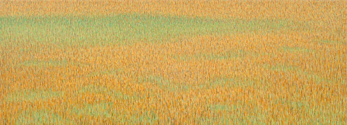 Grassland-36 2012 17x47-web by KennethOber
