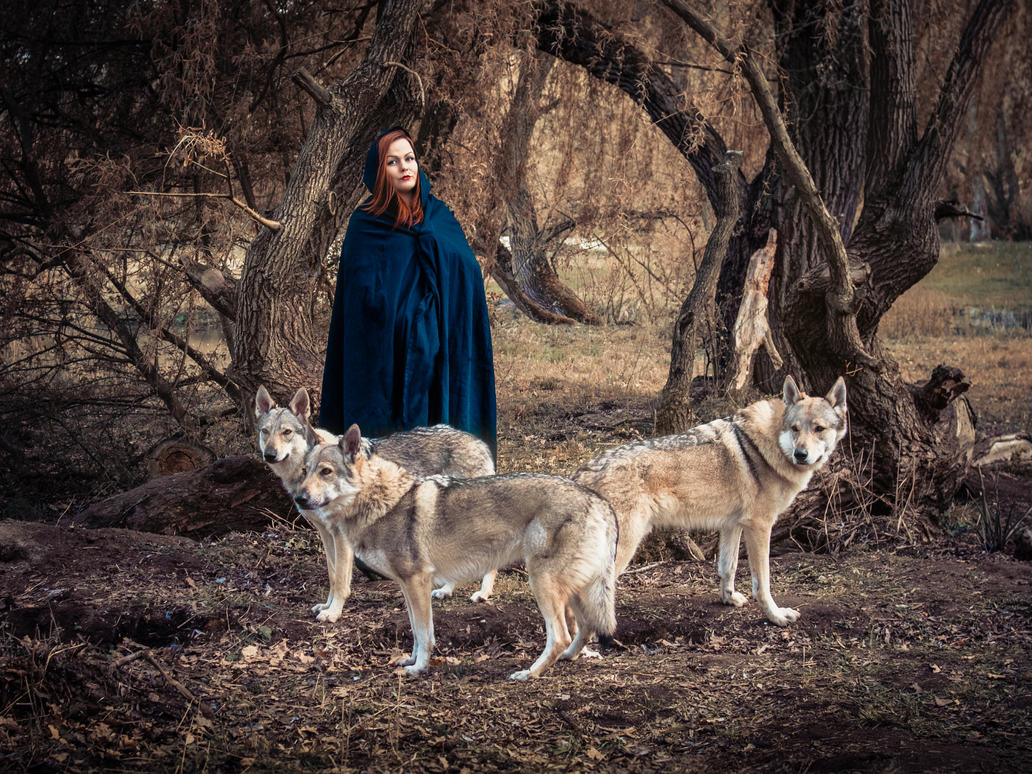 Witch with wolves by Sorrowdy