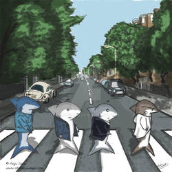 Sharks on Abbey Road