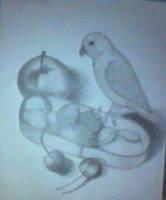 birdy by megaobeseflounder