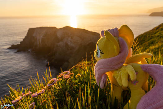 Californian sunset 2