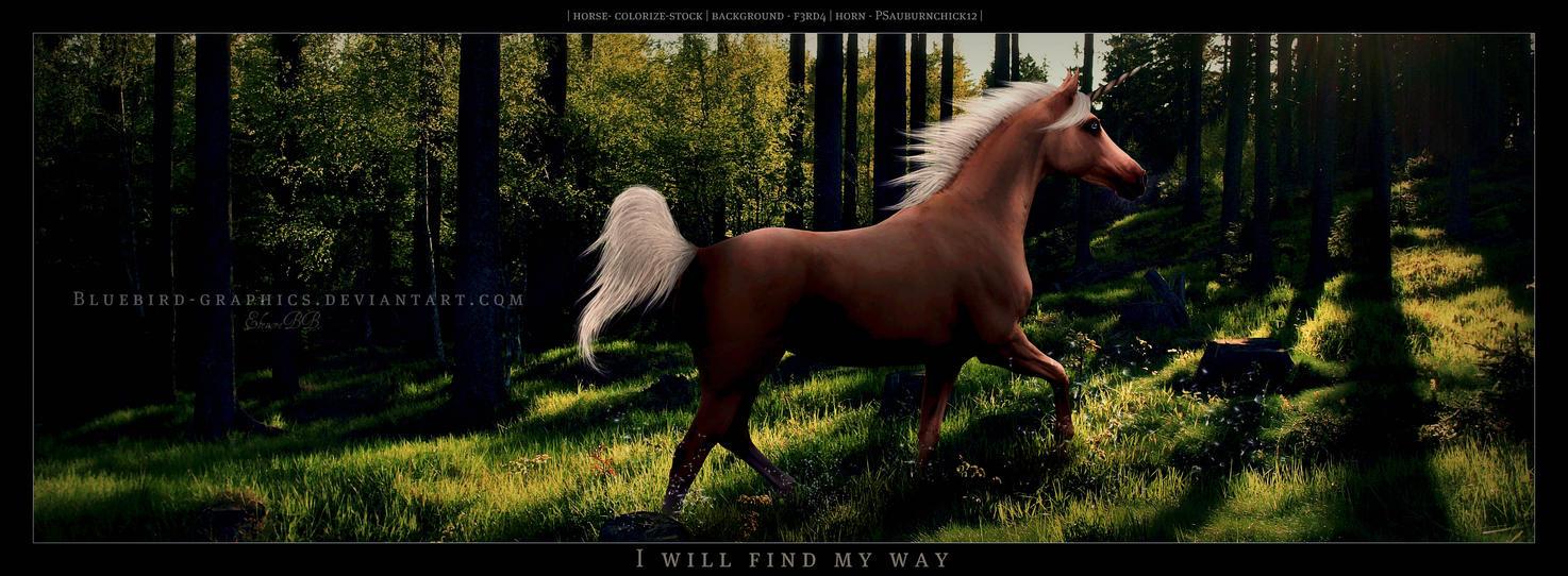 ^ Twilightstars ^ horses Ill_find_my_way_ll_by_bluebird_graphics-d353hjr