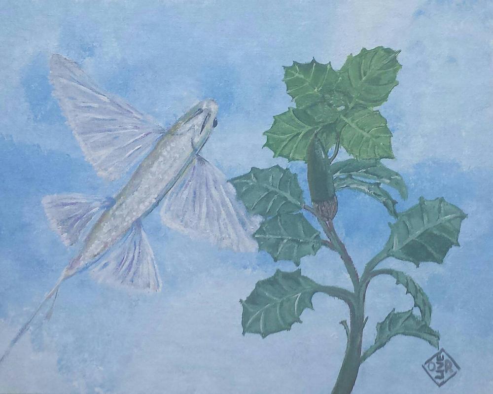 Catalina Flying Fish by TomOliverArt