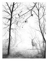 November Fog by mynti