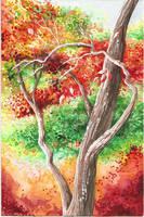 Watercolor Practice II