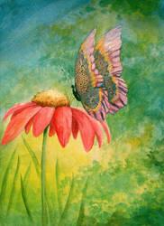 Butterfly Doodle by mynti