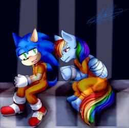 Comision Sonic Y Rainbow Dash by Vegetitakawaii