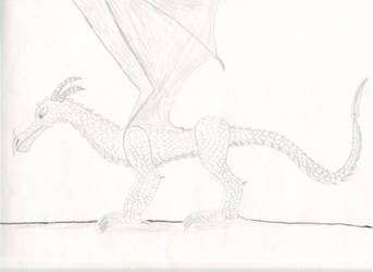 old dragon drawing by 98dragonshadow842