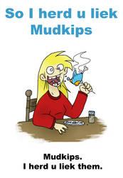 I herd u liek Mudkips by VampireMeerkat