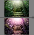 LR preset: Purple Nature -free