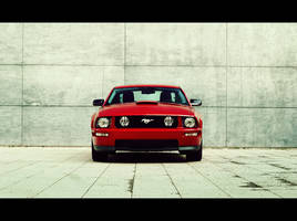 My Mustang -  the front by dejz0r