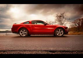 Mustang at lake by dejz0r