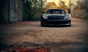 Porsche Carrera GT - B I R D by dejz0r