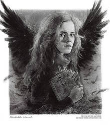 Hermione Granger and The Tale of the Three Brother