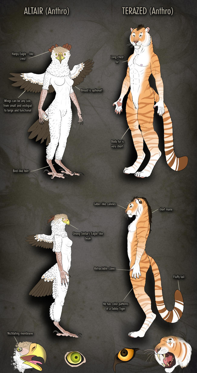 Anthro Altair-Terazed reference sheet by AltairSky