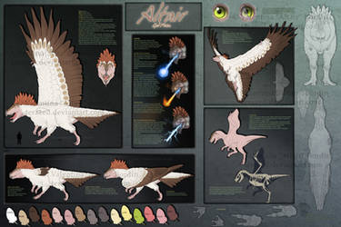 Altair Reference Sheet 2012