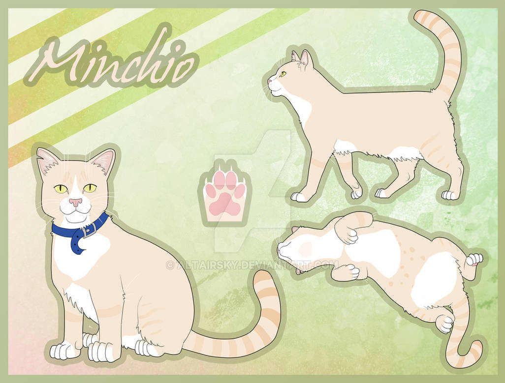 Minchio the Cat Reference sheet