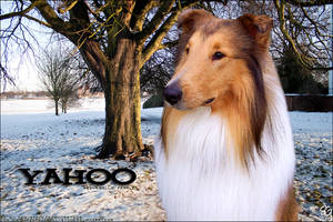 Mahden's YAHOO by magsislove