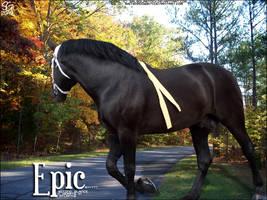 Zafirah's EPIC by magsislove