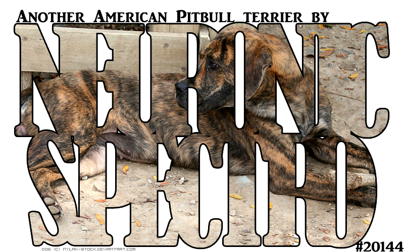 Neuro n Spectro's PITBULLS by magsislove