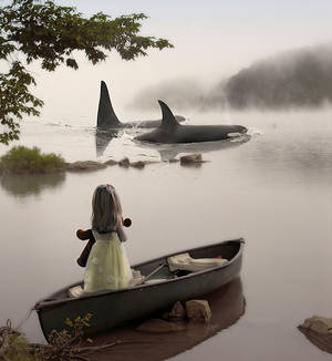 The girl and the whales