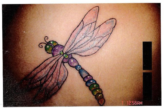 dragonfly by prodigy 420 on deviantart. Black Bedroom Furniture Sets. Home Design Ideas