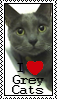 I Love Grey Cats Stamp by marienoire