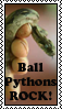 Ball Python Stamp by marienoire