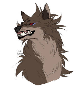wolf indra