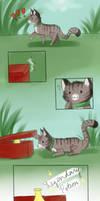 moo1 red box