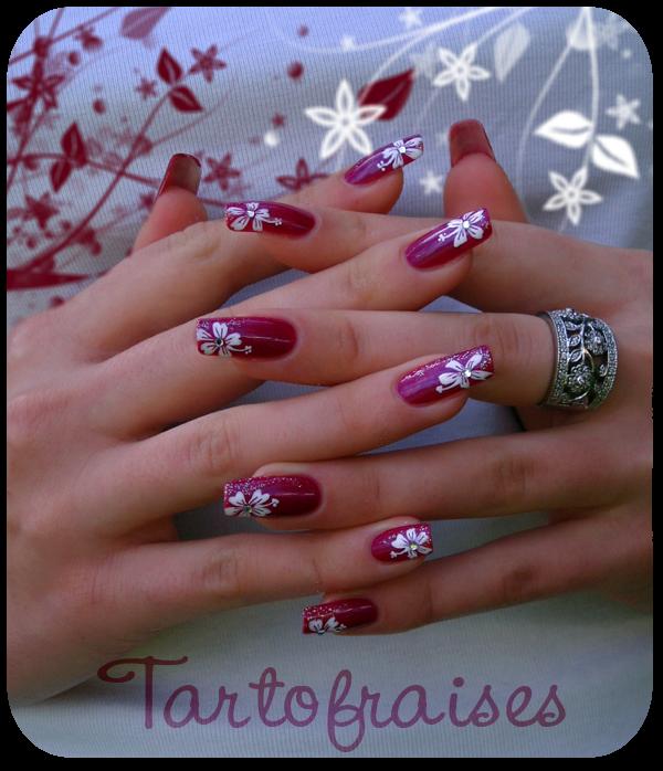 hibiscus by Tartofraises