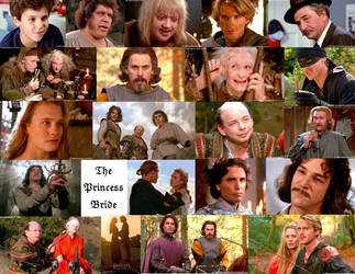 The Princess Bride Collage by JackieStarSister