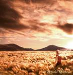 Where Twilight Dwells by MuDDiTToX