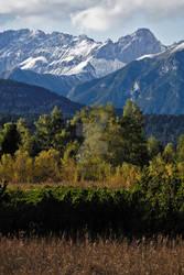 Alpine Fall Scenery