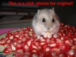 In the pomergranate by HamsterFun