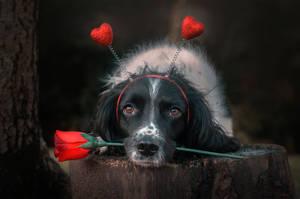 Happy Valentines Day! by Lunarlueur
