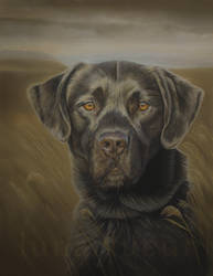 Waiting for the Call - Pastel Painting by Lunarlueur