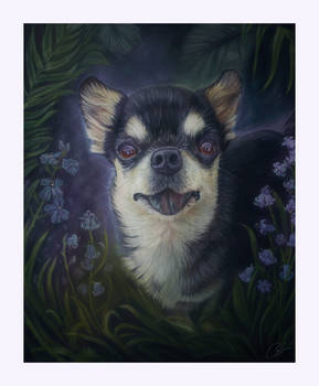 Little Lucky - Pastel Painting