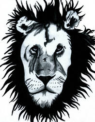 Black Maned Lion by Tanias-Reign