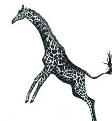 Giraffe by Tanias-Reign