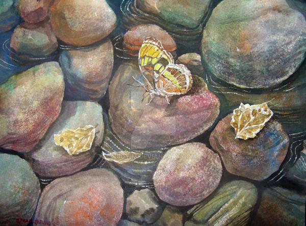 butterfly by boy-m