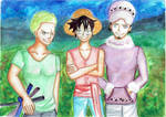 One Piece - Zoro, Luffy and Law