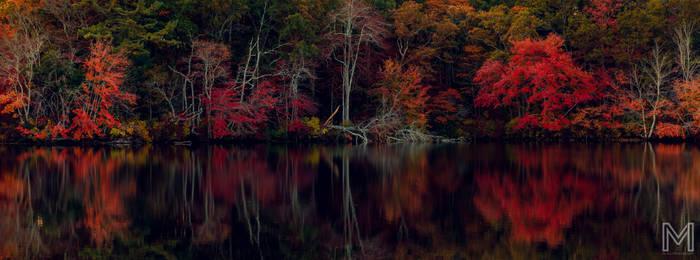 An Autumn Pond