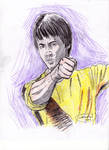 Bruce Lee: The Game of Death