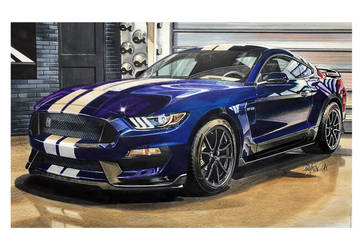 Mustang Shelby by Stephen59300