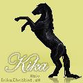 Howrse Av - Kika by Bright-Button