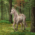 Horse in a Forest by Bright-Button